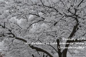 haiku DSC_0650